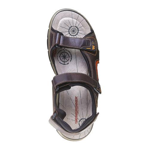 Sandali da uomo in pelle weinbrenner, marrone, 864-4218 - 19
