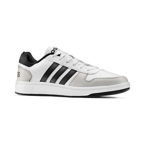 Adidas Hoops da uomo adidas, bianco, 801-1553 - 13